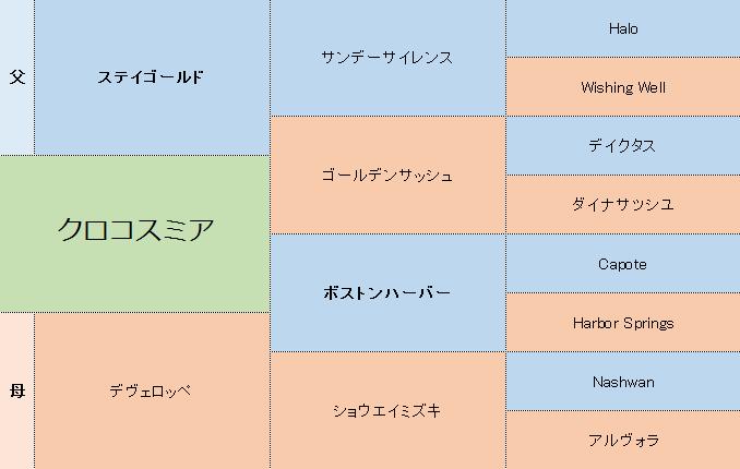 クロコスミアの三代血統表