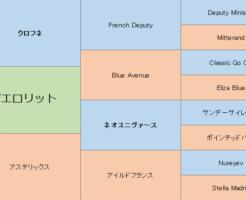 アエロリットの三代血統表