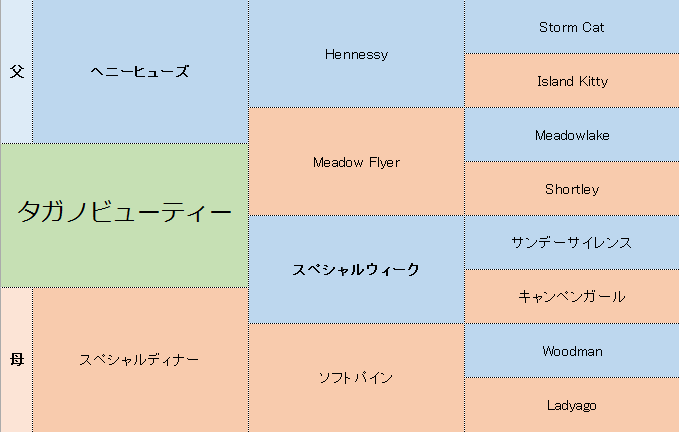 タガノビューティーの三代血統表