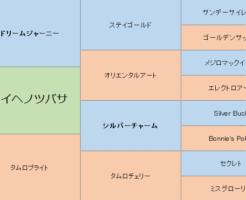 ミライヘノツバサの三代血統表