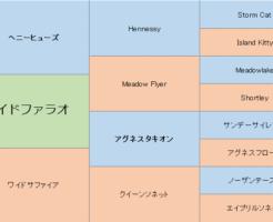 ワイドファラオの三代血統表