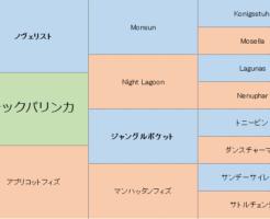 バラックパリンカの三代血統表
