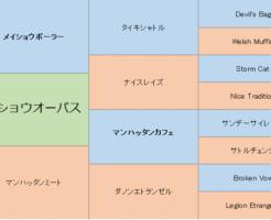 メイショウオーパスの三代血統表