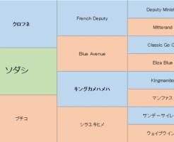 ソダシの三代血統表