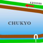中京 芝1200mのコース分析