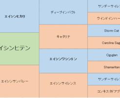 エイシンヒテンの三代血統表