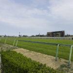 2021年4月10日 阪神競馬場の馬場傾向分析(芝)