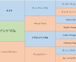 ヤシャマルの三代血統表