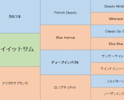 プレイイットサムの三代血統表