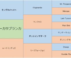 ルビーカサブランカの三代血統表