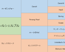 カレンルシェルブルの三代血統表